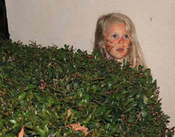 hide in bushes