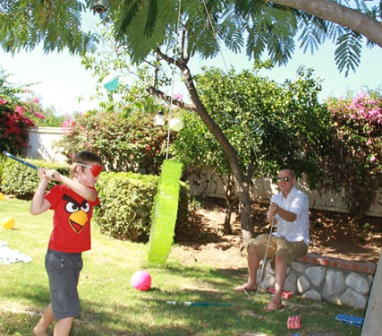 Angry Bird Birthday Party pinata
