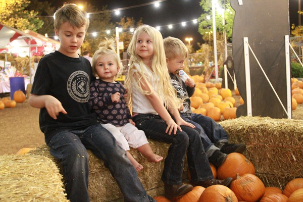 Pumpkin City in Orange County