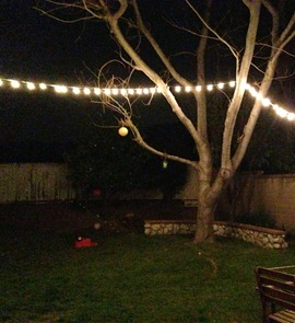 Backyard lights